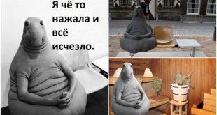Мистер непутевость: зверь по кличке «Ждун» покорил Интернет