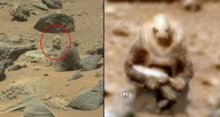Планета воинов: ученые шокированы сделанными снимками «марсианского бойца» ─ СМИ