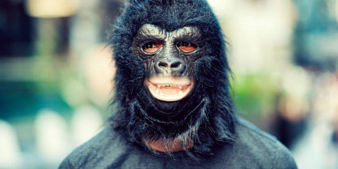 В Петербурге грабитель-горилла украл два «Самсунга» из салона сотовой связи