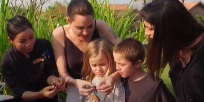Анджелина Джоли накормила детей пауками и скорпионами