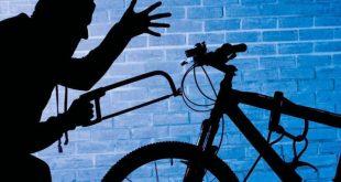 В Бельгии у министра транспорта украли велосипед во время его рассказа о велопарковках
