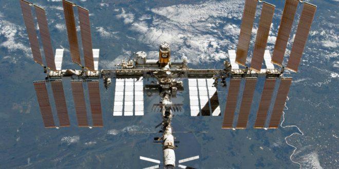 На День святого Валентина НАСА подарит астронавтам МКС смертельно опасную бактерию