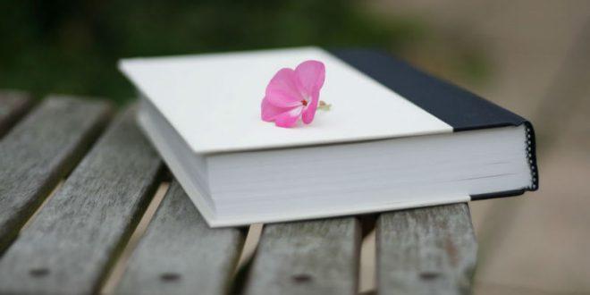 Парижская полиция оштрафовала женщину на 68 евро за оставленную на улице книгу