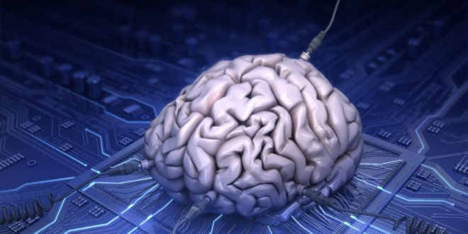Илон Маск займется разработкой технологии для связи человеческого мозга с компьютером