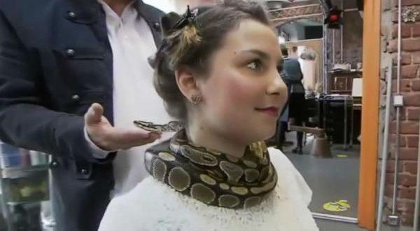 Немецкая парикмахерская предлагает клиентам массаж шеи живым питоном