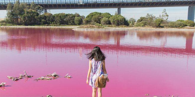 Удивительный природный феномен сделал воду в австралийском озере ярко-розовой