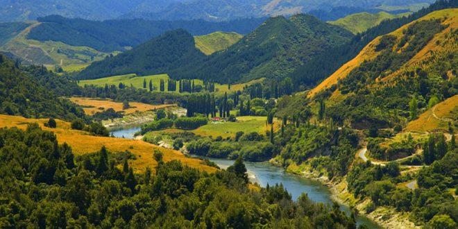В Новой Зеландии река впервые в истории была наделена правами человека