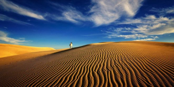 Американка пять дней блуждала по пустыне из-за ошибки в Google Maps