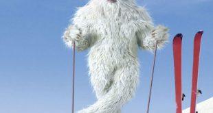 Канадские ученые обнаружили берлогу снежного человека