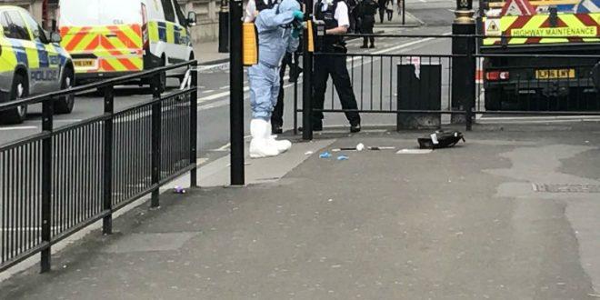 Вооруженный двумя ножами мужчина задержан возле здания британского парламента в Лондоне