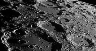 Уфологи обнаружили на снимках с поверхности Луны череп неизвестного животного