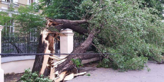 На Москву обрушился мощный ураган. Жертвами стихии стали 4 человека