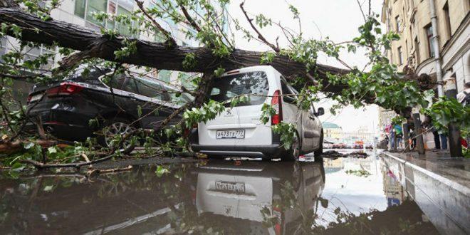 Число жертв вчерашнего урагана в Москве увеличилось до 16