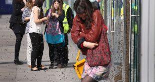 Нашествие пчел парализовало движение транспорта в центре Лондона