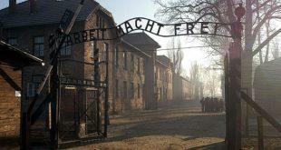 Израильская студентка украла экспонаты из музея Освенцима для собственной выставки