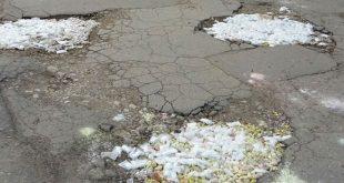 В Саратове дорожные ямы делали гипсовыми котиками