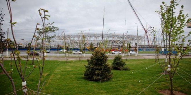 В Волгограде вырубили парк сталинградских вдов у Мамаева кургана ради парковки для ЧМ-2018
